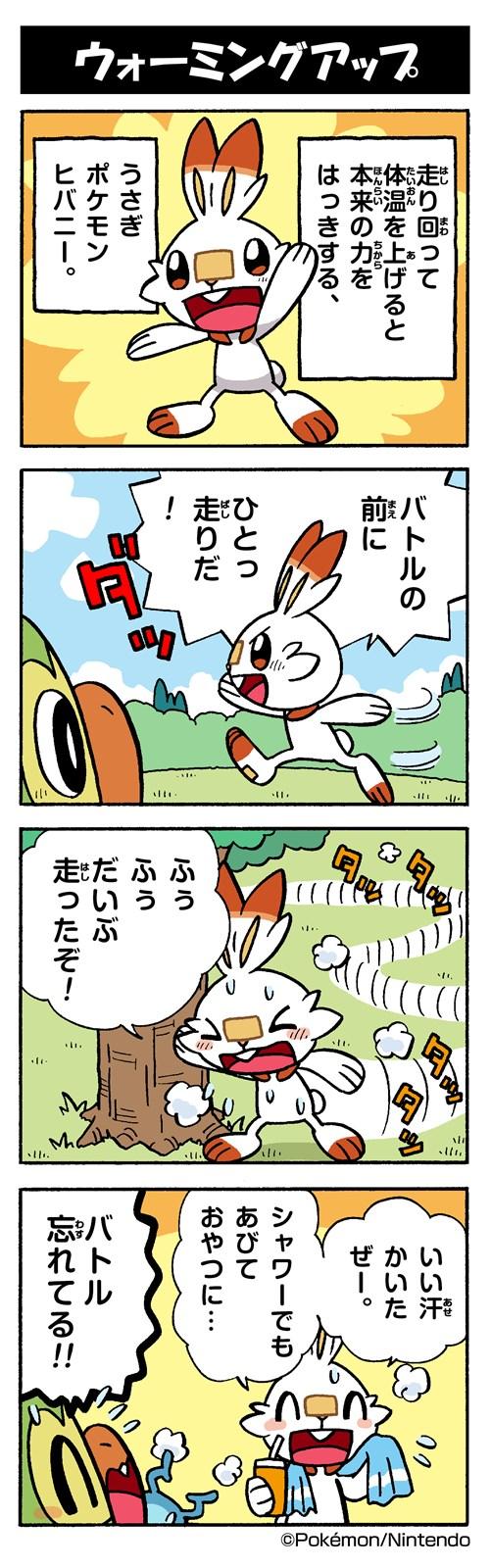 ヒ バニー ポケモン